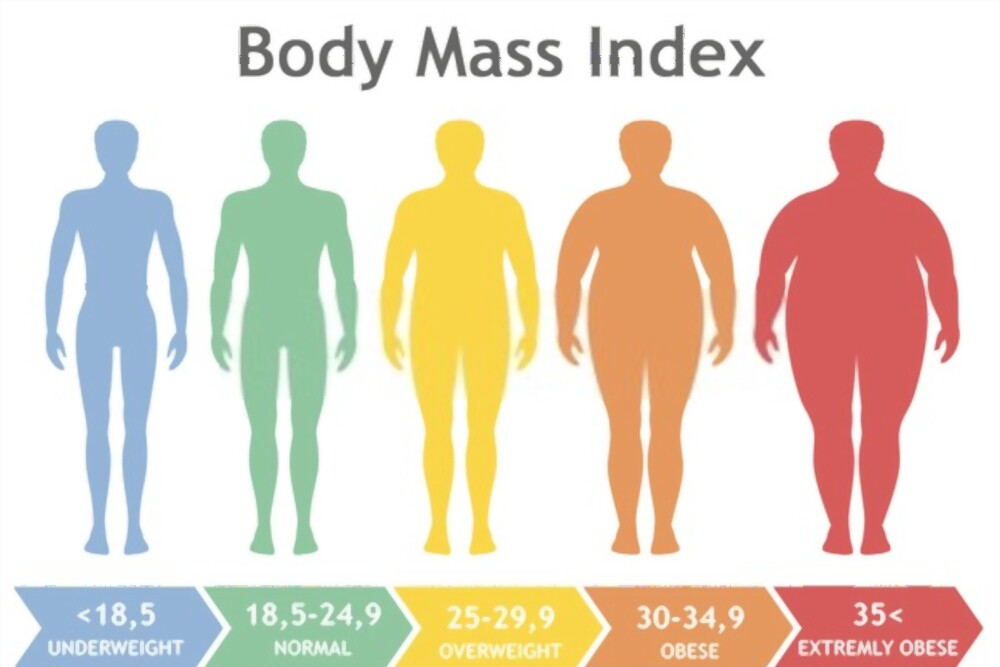 Body Mass Index & Your Health